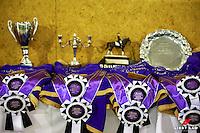 2017 NZL-Bates NZ Dressage Championships. Manfeild Park, Feilding. Thursday 2 February. Copyright Photo: Libby Law Photography