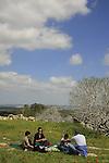 Israel, Shephelah, a picnic in Park Adulam