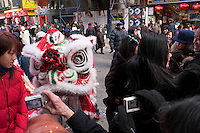 New York, NY - 26 January 2009 - Tourists pose for snapshots with Lion Dancer on Mott Street, during the Lunar New Year celebrations.
