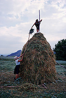 ROMANIA / Maramures / Valeni / July 2003..Maria Nemes, 51, and her daugher, Maria, 20, put the finishing touches on a haystack, one of 30 or more stacks they will make together in the summer...© Davin Ellicson / Anzenberger