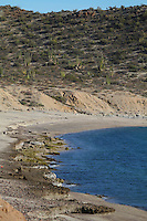 Desierto costero y la zona marítima de la Bahía de Kino, en el Mar llamado Mar Cortez,Sonora, México..Coastal desert and the sea area of Kino Bay in the Sea named Sea of Cortez, Sonora, Mexico..*Monday*06*/feb/201*.***photo:staff/NortePhoto**.*No*sale*to*third*