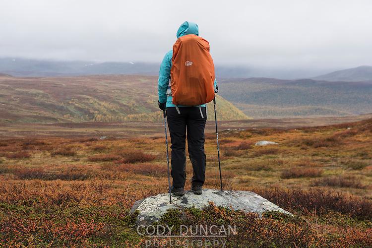Hiker standing on rock looking across mountain landscape between Aigert and Serve, Kungsleden trail, Lapland, Sweden