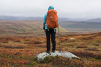 Hiker standing on rock looking across mountain landscape between Aigert and Serve, Kungsleden trail, Lapland, Sweden