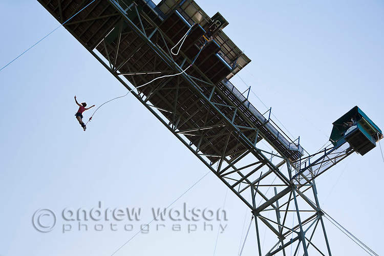 Bungy jumping from AJ Hackett bungy tower.  Smithfield, Cairns, Queensland, Australia