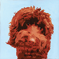 Painting of brown Barbet dog