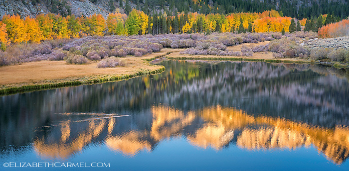 Sunrise Reflections, Eastern Sierra