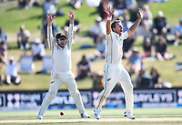 25th November 2019; Mt Maunganui, New Zealand;  Neil Wagner appeals successfully to trap Stuart Broad LBW to get the final wicket and win the test International test match day 5 of 1st test, New Zealand versus England;  at Bay Oval, Mt Maunganui, New Zealand.