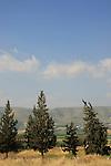 Israel, Lower Galilee. A view of Yavne'el valley from Mount Poriya