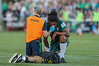Teofilo Paulo of London Irish receives treatment from the Medic during the Greene King IPA Championship match between Ealing Trailfinders and London Irish Rugby Football Club  at Castle Bar, West Ealing, England  on 1 September 2018. Photo by David Horn.