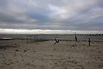 2007. Samouco. Portugal..Tejo estuary.