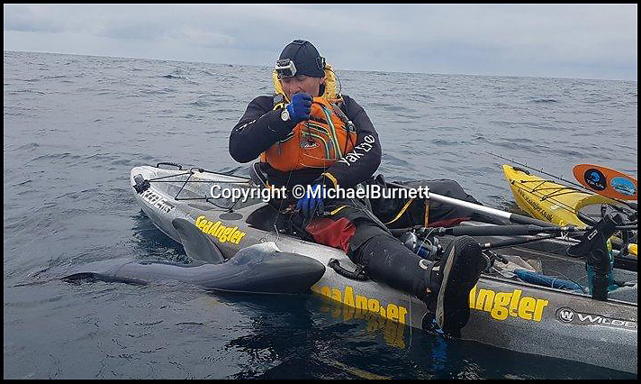 Bournemouth News (01202 558833)<br /> Pic: MichaelBurnett/BNPS<br /> <br /> We're gonna need a bigger boat....<br /> <br /> A trio of kayakers are celebrating after managing to catch a staggering 15 sharks in one day.<br /> <br /> The three men secured the sensational haul while fishing off the coast of Milford Havon, Pembroks and have described it as 'amazing'.<br /> <br /> The blue sharks all weighed more than 70lbs, with the heaviest hitting the scales at a whopping 125lbs.