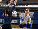 BROOKINGS, SD - OCTOBER 28:  Nazya Thies #6 from South Dakota State gets the ball past Lucija Bojanjac #6 from Oral Roberts Friday night at Frost Arena in Brookings. (Photo by Dave Eggen/Inertia)