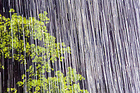 Close up of the water spray from a fall in Zion, Utah, USA. Time exposure foto, reise, photograph, image, images, photo,<br /> photos, photography, picture, pictures, urlaub, viaje, vacation, imagen, viagi, stock