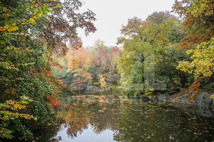 NOVA YORK, EUA, 06.11.2018 - OUTONO-NOVA YORK - Turistas apreciam a vista das arvores com folhagem coloridas no Central Park durante o outono na cidade de Nova York nesta terça-feira, 06. (Foto: William Volcov/Brazil Photo Press)