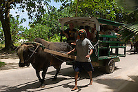 Seychelles, Island La Digue: tourist attraction ox-cart taxi<br />