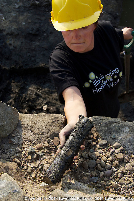 Day 6 - At Vindolanda Fort excavations. recovered wood from original log Fort, built before the stone forts.