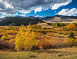 Gallatin National Forest, MT: Autumn colors near Tom Miner Creek and the Gallatin Range in the distance. Largest intact ecosystem in continental United States, part of Greater Yellowstone Area, established 1899.