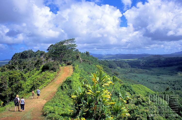 Hikers venture along Kuilau Ridge Trail