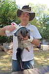 David Lindenmayer Checking Microchip Put In Mountain Brushtail Possum