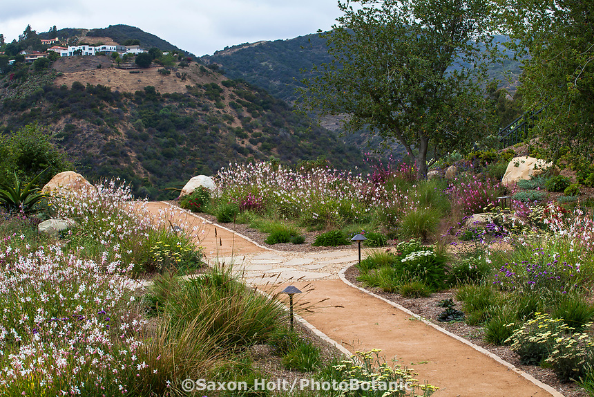 Earthen crushed rock path through summer-dry garden using water capture irrigation from on site cistern; design Urban Water Group, Los Angeles