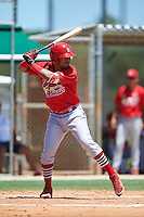 GCL Cardinals right fielder Carlos Talavera (15) at bat during the second game of a doubleheader against the GCL Marlins on August 13, 2016 at Roger Dean Complex in Jupiter, Florida.  GCL Cardinals defeated GCL Marlins 2-0.  (Mike Janes/Four Seam Images)