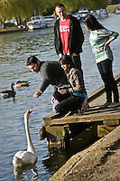 Photos for Kingston University  London international student brochures and prospectuses.??Relaxing and socialising - The Boaters PubThe Boaters Inn,  Canbury Gardens, Lower Ham Road.Tel: 08721077077Socialising, walking along river bank walkway; capturing green, leafy environment, boats and activity. Having a drink on the tables outside the boaters pub with river backdrop..??Date Taken: 19/04/10??Location: Kingston riverside??Contact:??Commissioned by:  Kingston University - Emma Carlino?Emma Carlino.International Marketing Communications Manager.International Centre.Kingston University London.Swan Wing, River House.53-57 High Street.Kingston upon Thames.London.KT1 1LQ.UK.Tel: +44(0)20 8417 3006.Fax: +44(0)20 8417 3028.Email: e.carlino@kingston.ac.uk.Website: www.kingston.ac.uk/international