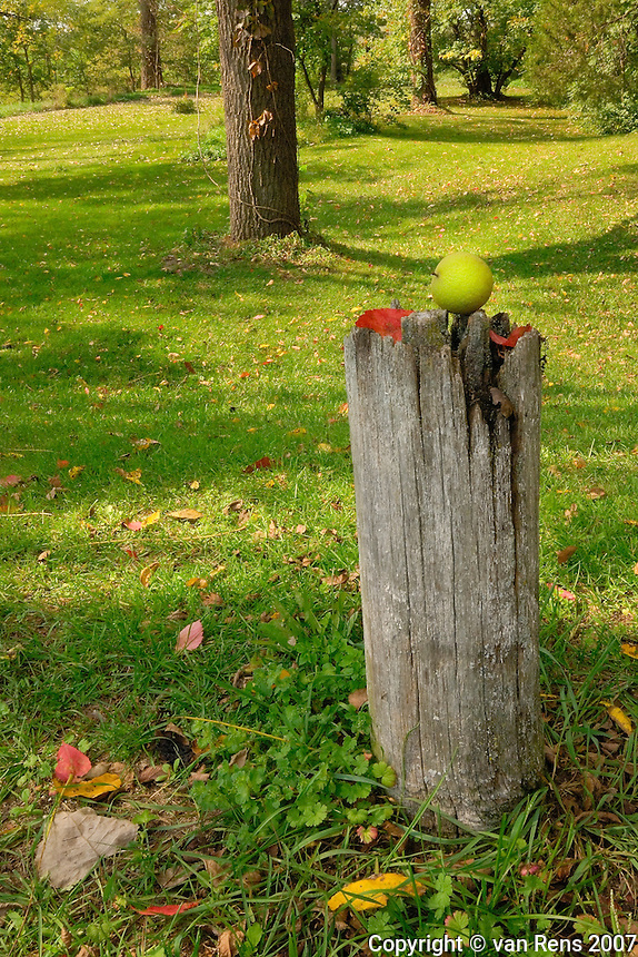 Walnut on a Post at historic Pottawatomie Indian village in Winameg,OH