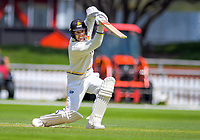 Wellington's Tom Blundell bats during day two of the Plunket Shield cricket match between the Wellington Firebirds and Otago Volts at the Basin Reserve in Wellington, New Zealand on Tuesday, 22 October 2019. Photo: Dave Lintott / lintottphoto.co.nz