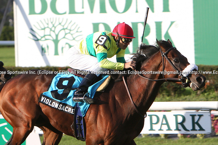 10 17 2010:Violon Sacre & Pablo Fragoso win the 51st running of the Grade III Knickerbocker Stakes for 3-year olds & up on the turf at 1 1/8 mile, Belmont Park, Elmont, NY. Trainer Patrick Biancone.  Owners Bernard Weill.