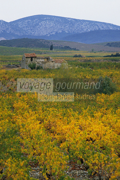 Europe/France/Languedoc-Roussillon/66/Pyrénées-Orientales/Maury: Vignoble de Maury AOC
