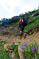 Male trekker with trekking poles and backpack hiking along trail, Western Himalayan Mountains, Kashmir, India..