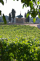 Vineyard. Chapel. The Tsantalis sponsored monastery. Mount Athos. Tsantali Vineyards & Winery, Halkidiki, Macedonia, Greece. Metoxi Chromitsa of St Panteleimon monastery.