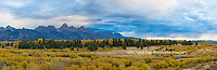 67545-08912 Fall color from Blacktail Ponds Overlook, Grand Teton National Park, WY