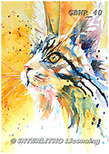 Simon, REALISTIC ANIMALS, REALISTISCHE TIERE, ANIMALES REALISTICOS, paintings+++++LizC_CatsEye,GBWR40,#a#, EVERYDAY