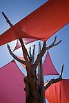 Roman de Salvo & Rob Wellington Quigley Architect - Seven Trees Park, San Jose California