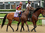 June 22, 2019 : Mia Mischief (#10, Ricardo Santana Jr.) in the post parade of the Roxelana Stakes at Churchill Downs, Louisville, Kentucky. Trainer Steven M. Asmussen, Owners L. William and Corinne Heiligbrot, Heider Family Stables LLC (Scott Heider), and Madaket Stables LLC (Sol Kumin and Jason Monteleone). By Into Mischief x Greer Lynn, by Speightstown. Mary M. Meek/ESW/CSM