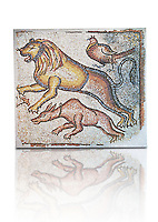 Eastern Mediterranean Roman mosaics of Animals, late 5th - 6th century. Marble cubes, and limestone. Three animals are in the race, a dog, a lion and a pheasant. They belonged perhaps to a hunting scene which was a popular floor decoration in houses or they may illustrate the biblical theme of 'Peace of animals', found on the floors of the churches of the Eastern Roman provinces. inv 3672, Louvre Museum, Paris