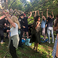 NEW YORK, USA - MAY 27: People around help the Police <br /> to rescue three people who get injured after a branch falls on them in Riverside Community Park in Upper West Side Manhattan on May 27,2020 in New York, USA.(Photo by Joana Toro/VIEWpress )