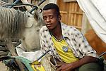 AWASA - ETHIOPIA - 15 APRIL 2004 -- An Ethiopian horse ricksha (rickshaw) driver having a break while feeding his horse in the East African Rift Valley city of Awasa. --PHOTO: JUHA ROININEN / EUP-IMAGES