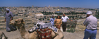 Asie/Israël/Judée/Jérusalem: Au Mont des Oliviers touristes se faisant photographier devant la vieille ville