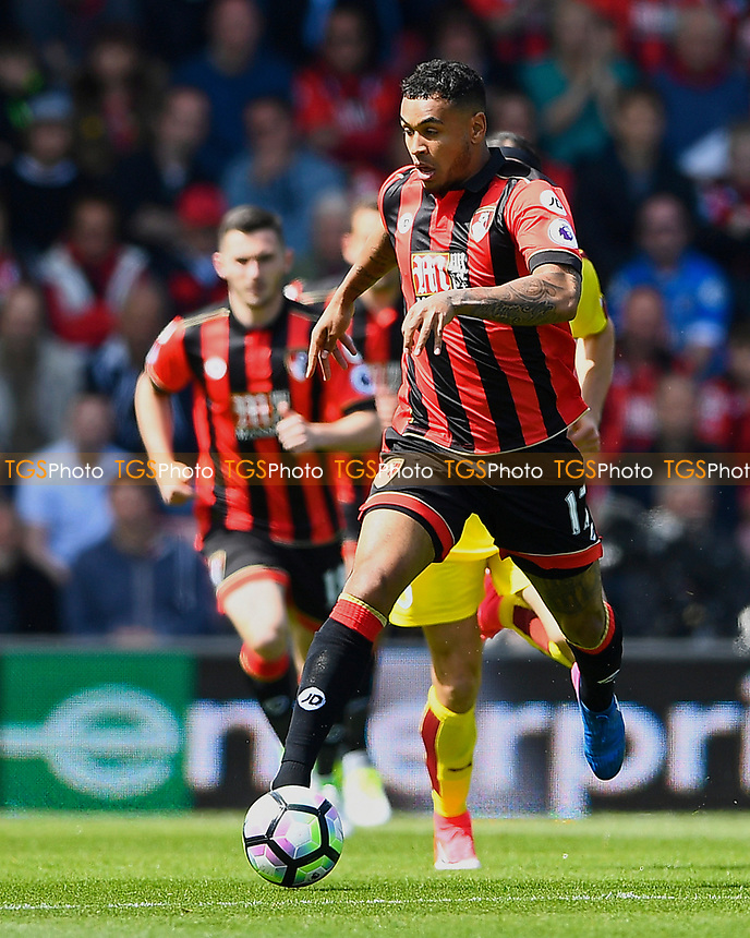 Joshua King of AFC Bournemouth during AFC Bournemouth vs Burnley, Premier League Football at the Vitality Stadium on 13th May 2017