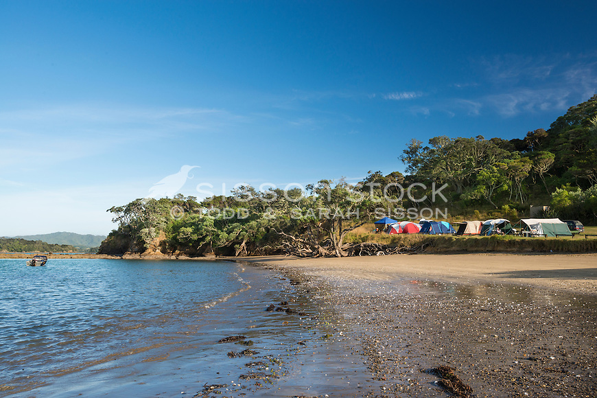 DOC campsite at Puriri Bay, Northland in summer, New Zealand - stock photo, canvas, fine art print