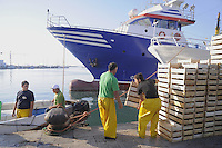 - Trapani, the fishing port....- Trapani, il porto peschereccio