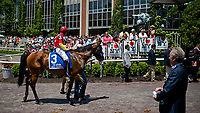 ELMONT, NY - JUNE 10: Abel Tasman #3, ridden by Mike Smith, in the paddock on Belmont Stakes Day at Belmont Park on June 10, 2017 in Elmont, New York (Photo by Scott Serio/Eclipse Sportswire/Getty Images)