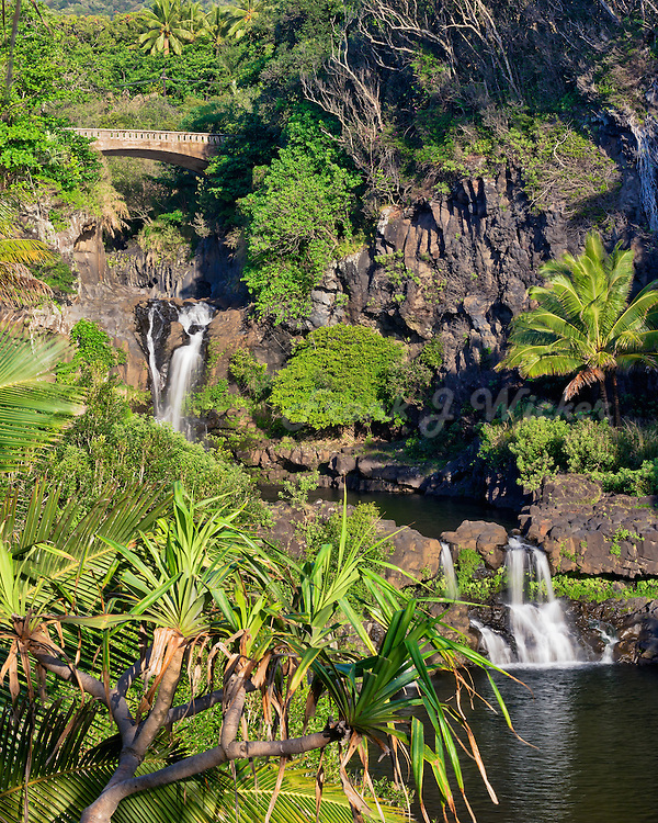 Golden morning light on the waterfalls at the seven pools in Kipahulu in Haleakala National Park in Maui in Hawaii USA