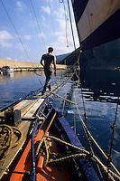 Europe/Italie/Calabre/Baganara : Préparatifs pour la pêche à l'espadon