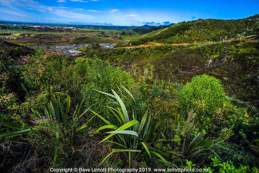 Papamoa Hills Regional Park in Bay Of Plenty, New Zealand on Friday, 7 June 2019. Photo: Dave Lintott / lintottphoto.co.nz