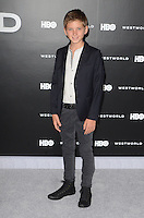 HOLLYWOOD, CA - SEPTEMBER 28: Oliver Bell at the premiere of HBO's 'Westworld' at TCL Chinese Theatre on September 28, 2016 in Hollywood, California. Credit: David Edwards/MediaPunch