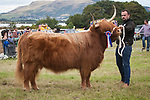 CR0002852 Malcolm MacNaughton of Donald and Malcolm MacNaughton of Kelty  with Haley of Ranoch, Supreme Champion of Highland Cattle Class. 11 Aug 2018 © Copyright photograph by Tina Norris. Contact Tina on 07775 593 830 info@tinanorris.co.uk All print sales via Tina Norris. www.tinanorris.co.uk http://tinanorris.photoshelter.com