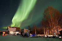 The Northern lights dance overhead at the Takotna checkpoint on Wednesday night during Iditarod 2011